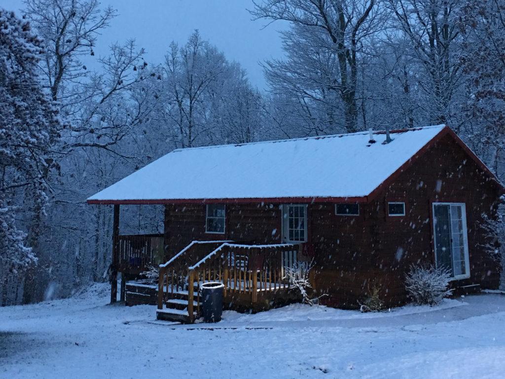 Forest Edge Cabin in winter